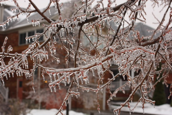 Ice Storm Toronto December 2013 #darkTO #iceTO
