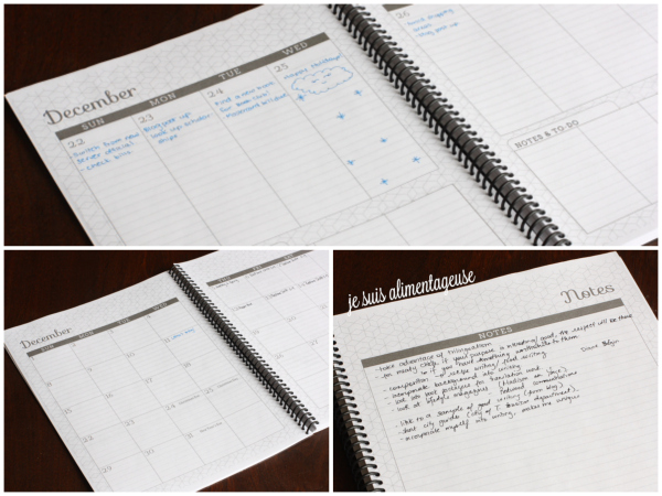 Review: Planner by @Review: Planner from @sweetannedesign