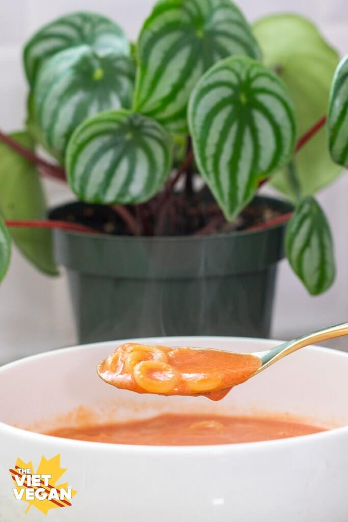 Spaghetti Os in a spoon over a bowl of soup, watermelon peperomia in the background.