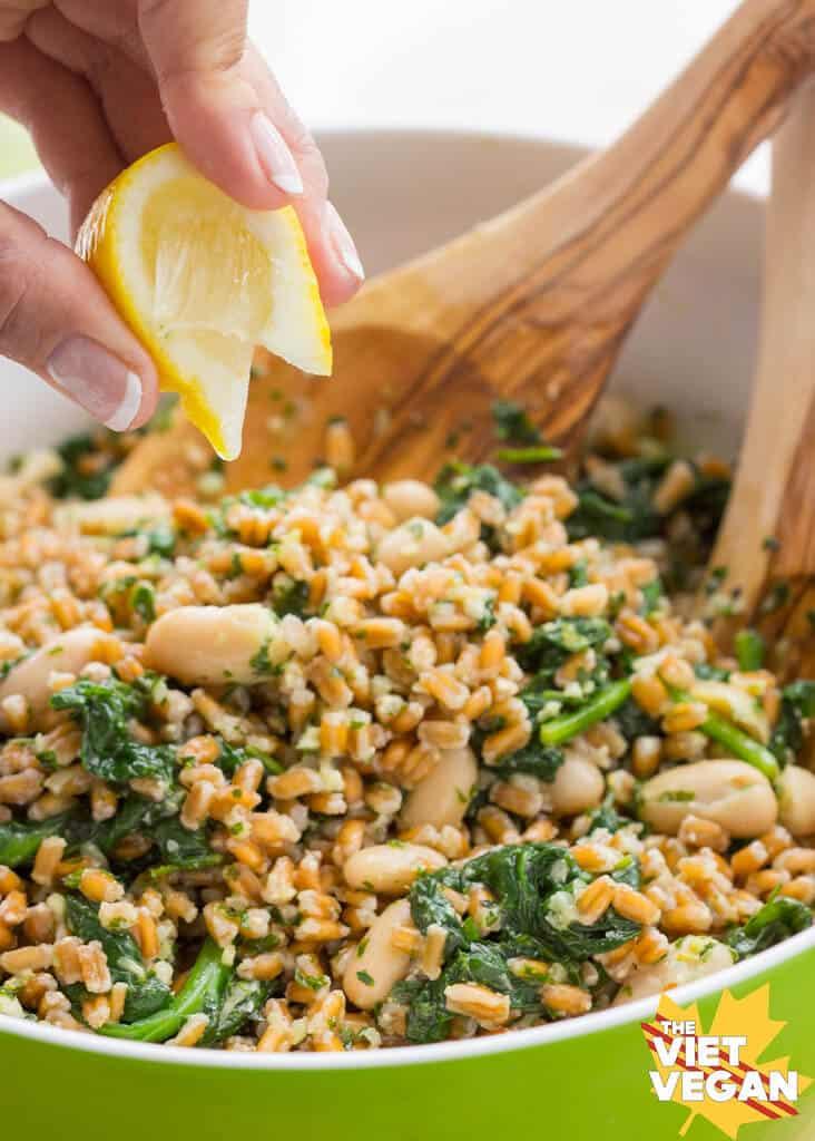 Farro, Cannellini Bean, Parsley Pesto Salad