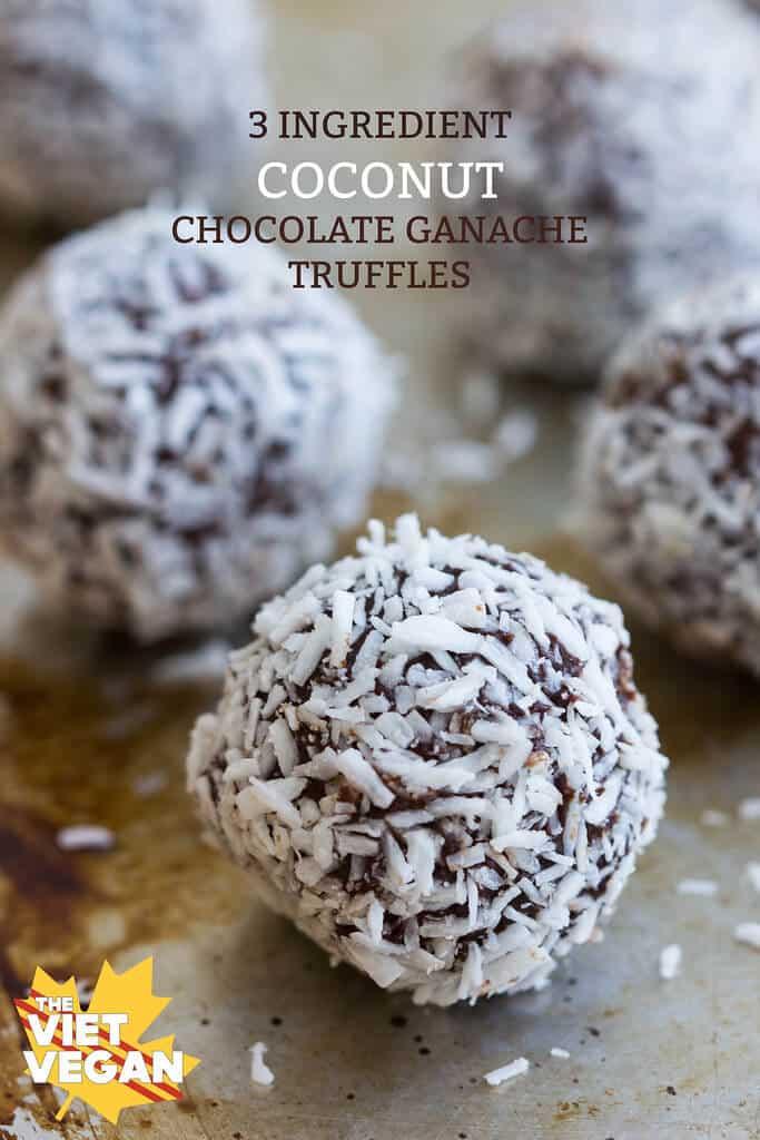 3 Ingredient Vegan Coconut Chocolate Truffles