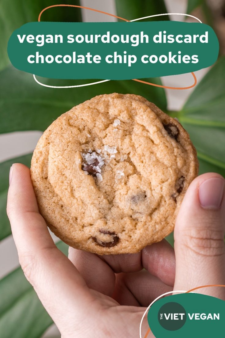 chocolate chip cookie with salt flakes on top, hed in front of a monstera leaf (with text title on top)