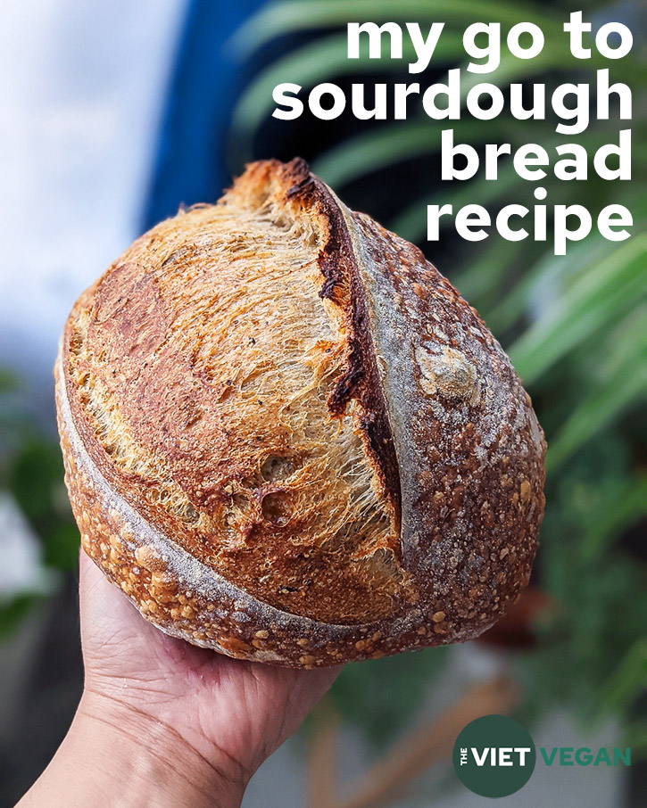 title photo with plain sourdough loaf, held in hand in front of some houseplants